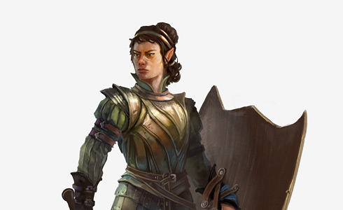 Half Elf commander of the Keep